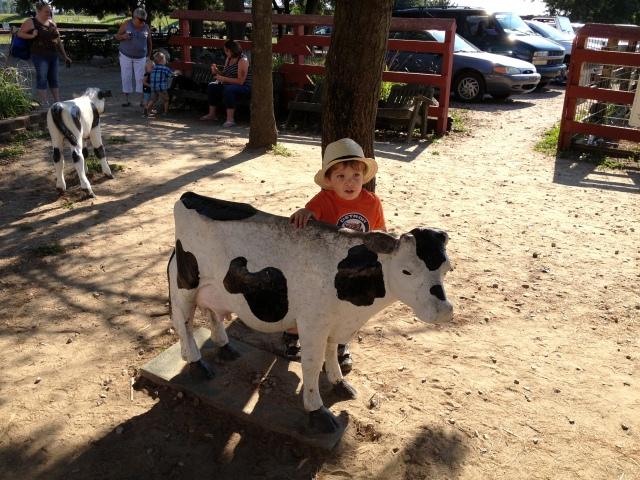 Lucas fake cow
