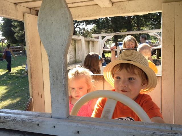 Lucas driving cow truck